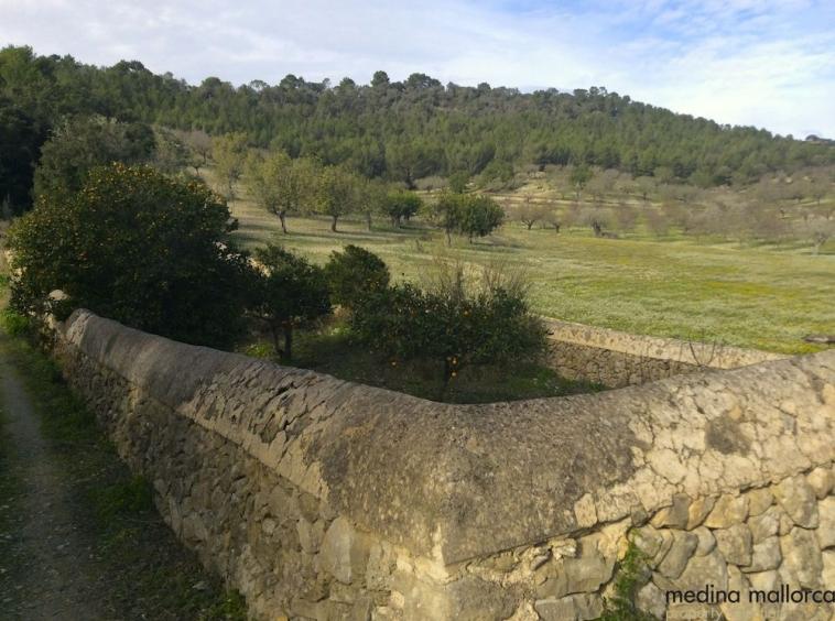Finca historica cerca de San Joan medina mallorca 20