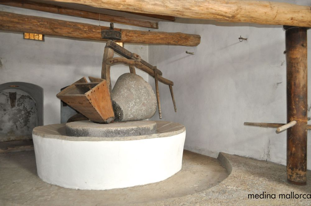 Finca rustica en Puigpunyent medina mallorca 15