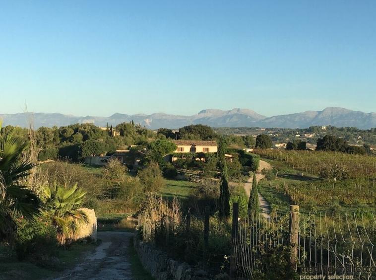 Preciosa Finca con Vinedo en paisaje idilico medina mallorca 1